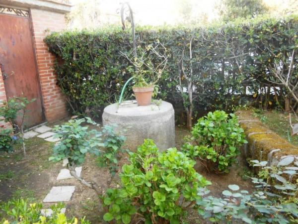 Appartamento in vendita a Anzio, Lavinio Mare, Con giardino, 60 mq - Foto 4