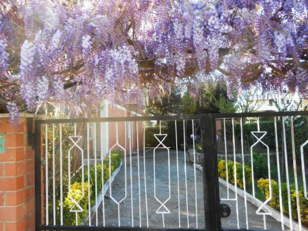 Appartamento in vendita a Anzio, Lavinio Mare, Con giardino, 60 mq - Foto 1
