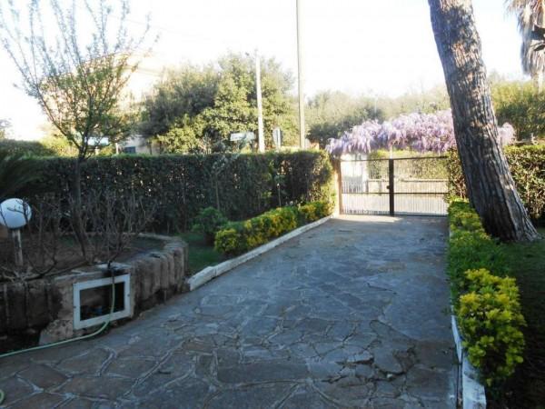Appartamento in vendita a Anzio, Lavinio Mare, Con giardino, 60 mq - Foto 11