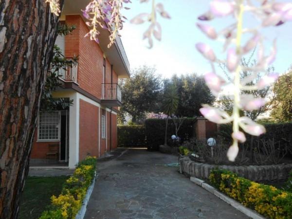 Appartamento in vendita a Anzio, Lavinio Mare, Con giardino, 60 mq - Foto 5