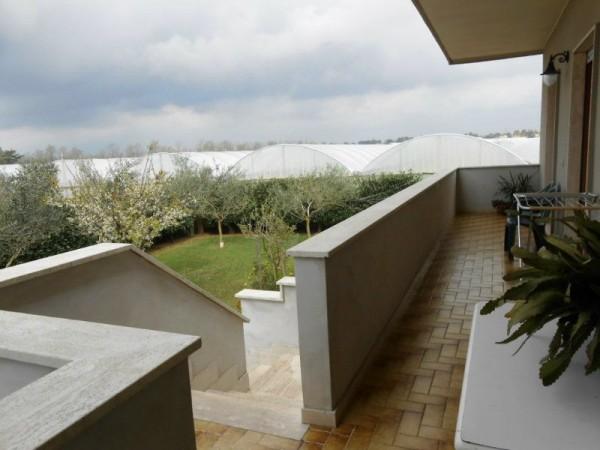 Villa in vendita a Anzio, Sacida, Con giardino, 140 mq - Foto 18