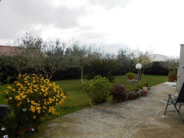 Villa in vendita a Anzio, Sacida, Con giardino, 140 mq - Foto 19