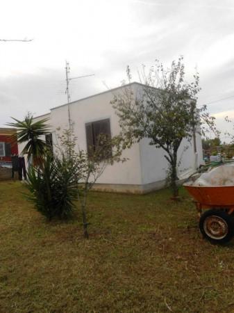 Villa in vendita a Nettuno, Tre Cancelli, Con giardino, 70 mq - Foto 10