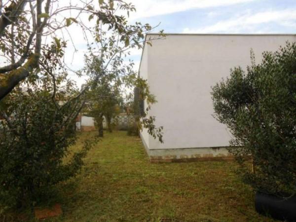 Villa in vendita a Nettuno, Tre Cancelli, Con giardino, 70 mq - Foto 14