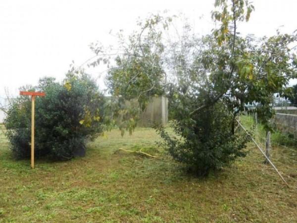 Villa in vendita a Nettuno, Tre Cancelli, Con giardino, 70 mq - Foto 9