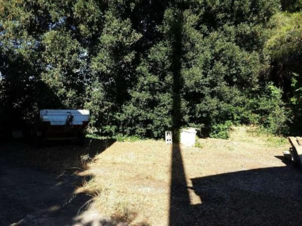 Villa in vendita a Copertino, Con giardino, 245 mq - Foto 4