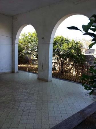 Villa in vendita a Copertino, Con giardino, 245 mq - Foto 5