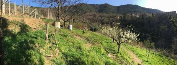 Casa indipendente in vendita a Moneglia, Prima Collina, Con giardino, 190 mq - Foto 12