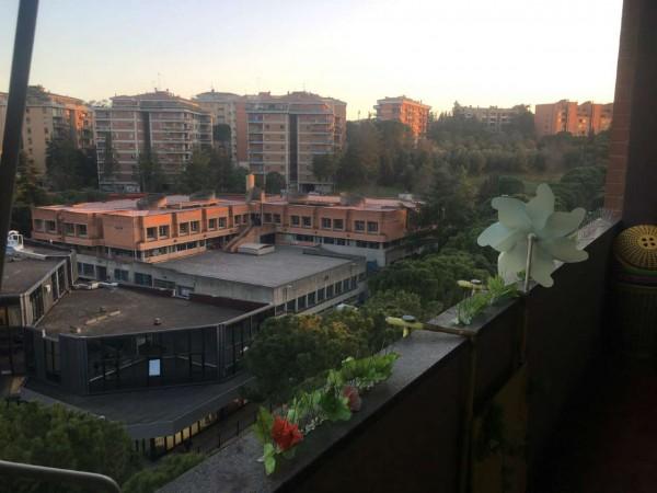 Appartamento in affitto a Perugia, Gallenga, Arredato, 42 mq - Foto 3
