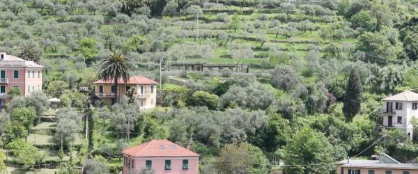 Villa in vendita a Zoagli, Zoagli, Con giardino, 150 mq - Foto 8