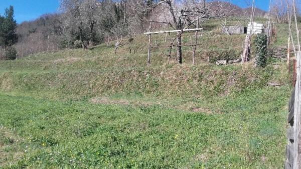 Casa indipendente in vendita a Tribogna, Con giardino, 145 mq - Foto 20