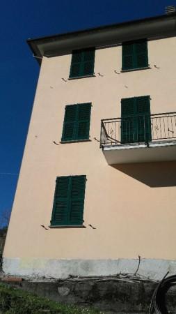 Casa indipendente in vendita a Tribogna, Con giardino, 145 mq - Foto 23