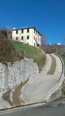 Casa indipendente in vendita a Tribogna, Con giardino, 145 mq - Foto 1
