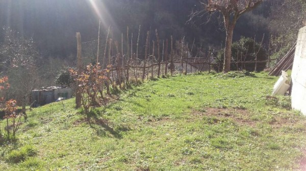 Casa indipendente in vendita a Tribogna, Con giardino, 145 mq - Foto 22