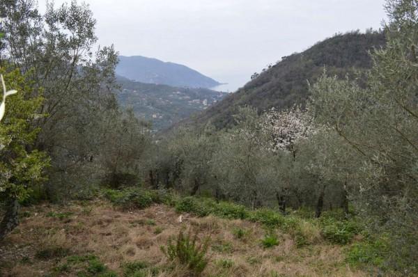 Villa in vendita a Recco, Verzemma, Con giardino, 90 mq - Foto 24