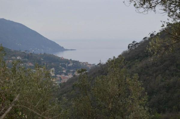 Villa in vendita a Recco, Verzemma, Con giardino, 90 mq - Foto 23