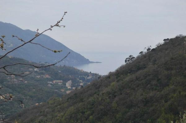 Villa in vendita a Recco, Verzemma, Con giardino, 90 mq
