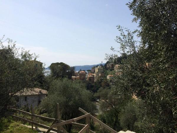 Villa in vendita a Zoagli, Mulini, Con giardino, 134 mq - Foto 24
