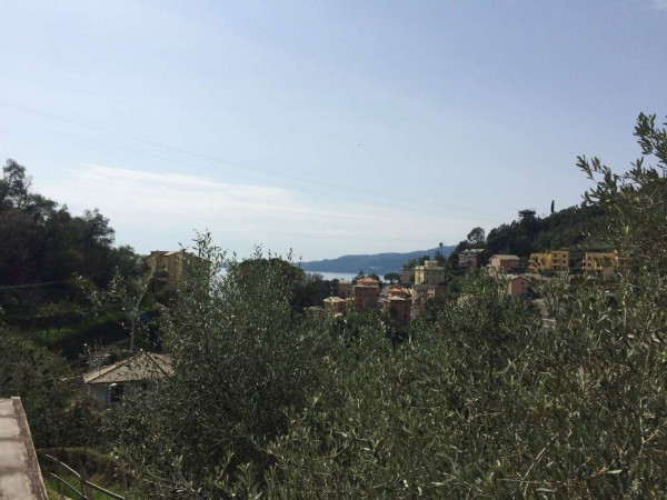 Villa in vendita a Zoagli, Mulini, Con giardino, 134 mq - Foto 26