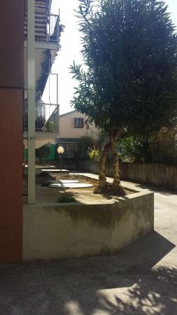 Appartamento in vendita a Padova, Voltabarozzo, Con giardino, 135 mq - Foto 4