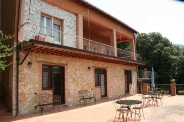 Villa in vendita a Poggio Catino, Con giardino, 300 mq - Foto 8