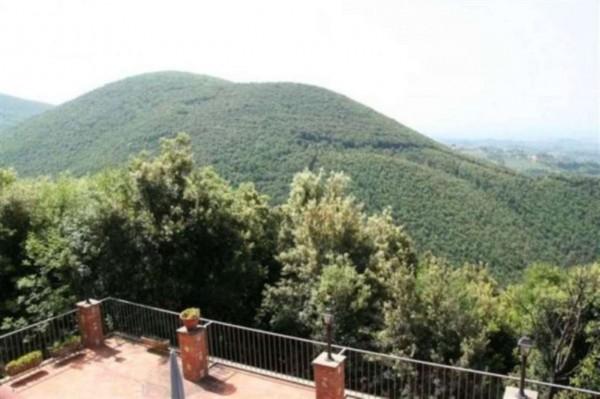 Villa in vendita a Poggio Catino, Con giardino, 300 mq - Foto 1