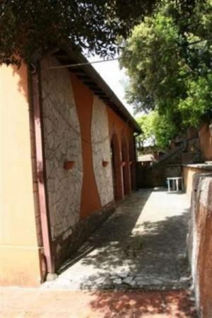 Villa in vendita a Poggio Catino, Con giardino, 300 mq - Foto 4