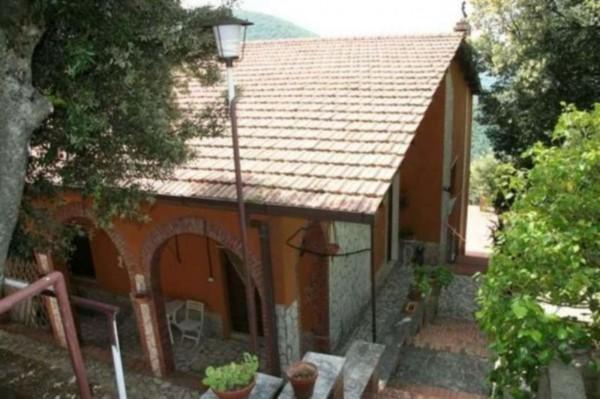 Villa in vendita a Poggio Catino, Con giardino, 300 mq - Foto 11