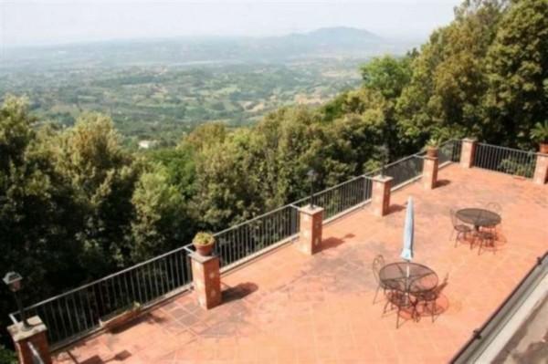 Villa in vendita a Poggio Catino, Con giardino, 300 mq - Foto 9