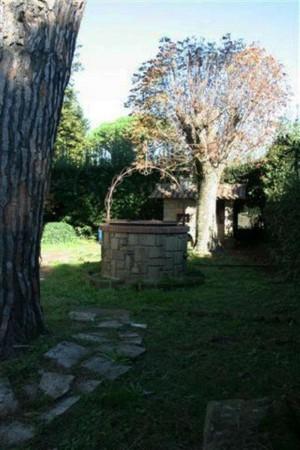 Casa indipendente in vendita a Marino, Con giardino, 400 mq - Foto 4