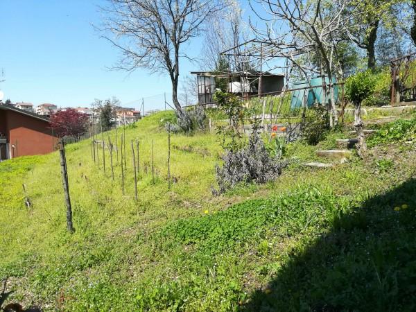 Casa indipendente in vendita a Mondovì, Carassone, Con giardino, 150 mq - Foto 9