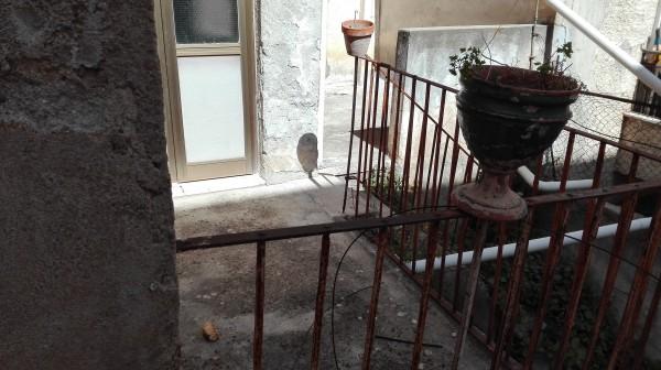 Appartamento in vendita a Sant'Agata di Militello, Centro, 120 mq - Foto 14
