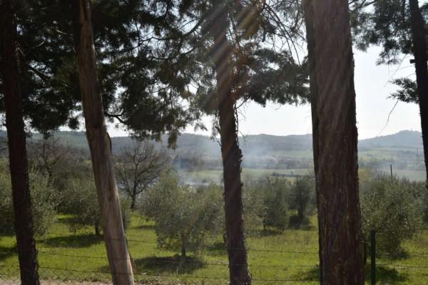 Casa indipendente in vendita a Magione, Lago Trasimeno, Con giardino, 85 mq - Foto 20