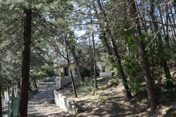 Casa indipendente in vendita a Magione, Lago Trasimeno, Con giardino, 85 mq - Foto 21