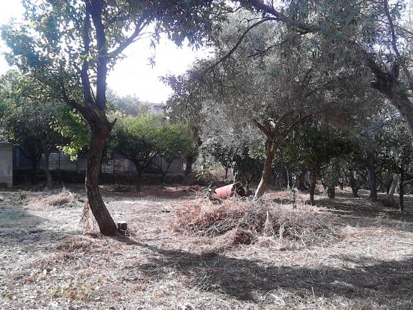 Casa indipendente in vendita a Sant'Agata di Militello, Limitrofa, Con giardino, 140 mq - Foto 5
