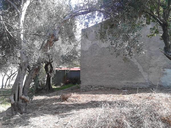 Casa indipendente in vendita a Sant'Agata di Militello, Limitrofa, Con giardino, 140 mq - Foto 13