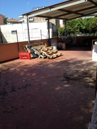 Immobile in vendita a Nettuno, Marina E Scacciapensieri, Con giardino, 550 mq - Foto 12