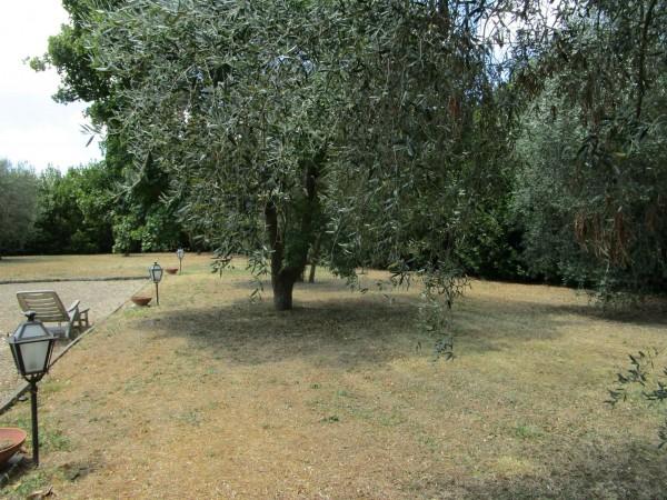 Rustico/Casale in vendita a Bagno a Ripoli, Con giardino, 350 mq - Foto 2