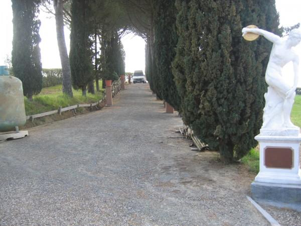 Rustico/Casale in vendita a Guardistallo, 470 mq - Foto 15