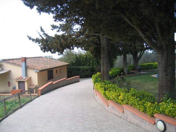 Rustico/Casale in vendita a Guardistallo, 470 mq - Foto 19
