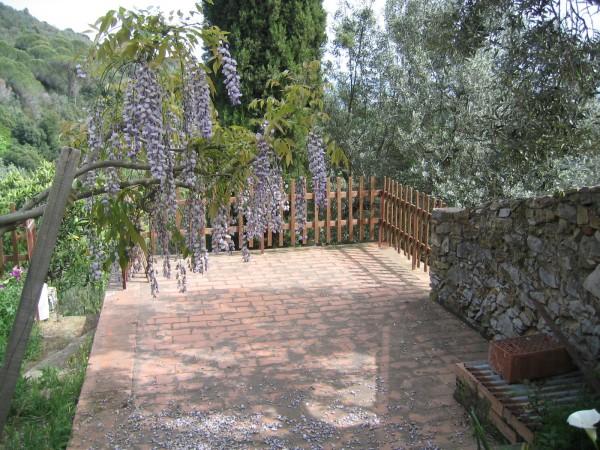 Rustico/Casale in vendita a Campiglia Marittima, Paese, 150 mq - Foto 5