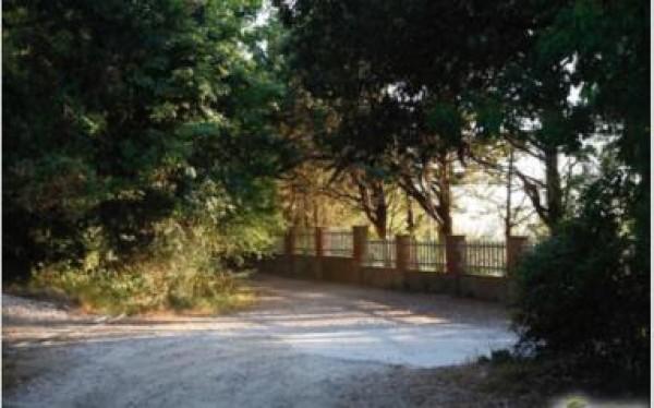 Villa in vendita a Livorno, Collinare, 380 mq - Foto 21