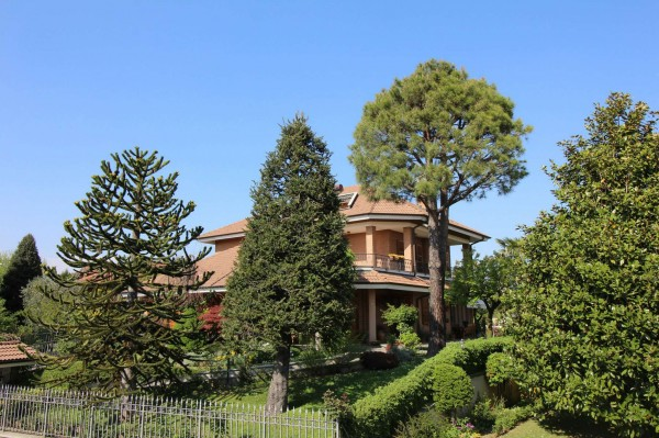Villa in vendita a Alpignano, Centro, Con giardino, 450 mq - Foto 23
