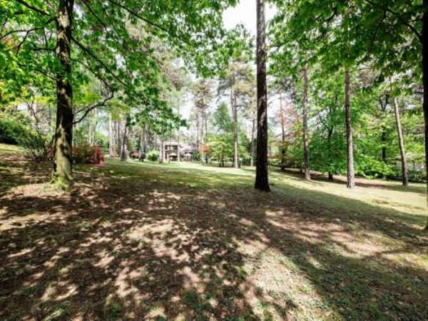 Villa in vendita a Casale Litta, Località Bosco Grande, Con giardino, 251 mq - Foto 12
