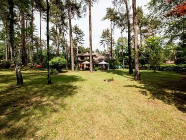 Villa in vendita a Casale Litta, Località Bosco Grande, Con giardino, 251 mq - Foto 3