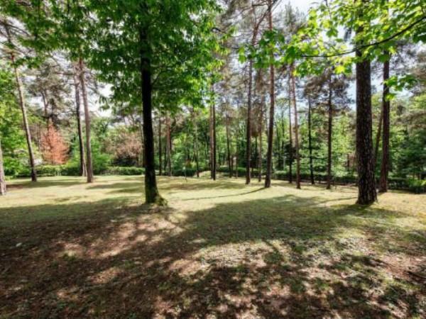 Villa in vendita a Casale Litta, Località Bosco Grande, Con giardino, 251 mq - Foto 8