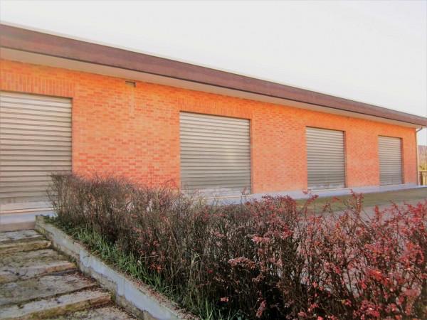 Negozio in affitto a Cambiano, 250 mq