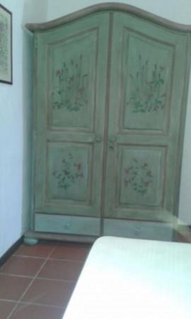 Appartamento in affitto a San Teodoro, Arredato, con giardino, 60 mq - Foto 11