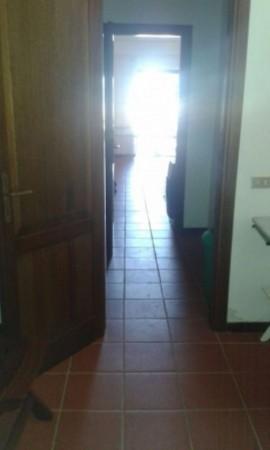Appartamento in affitto a San Teodoro, Arredato, con giardino, 60 mq - Foto 5