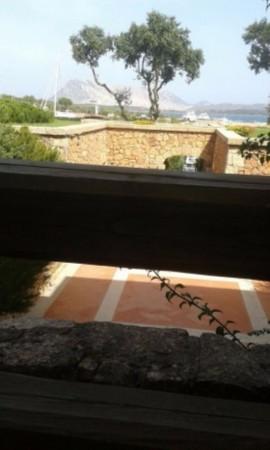 Appartamento in affitto a San Teodoro, Arredato, con giardino, 60 mq - Foto 4